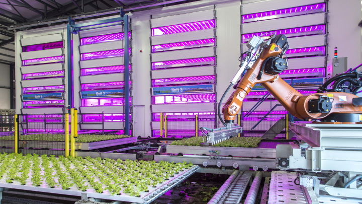Large-scale indoor vertical farming plant factory