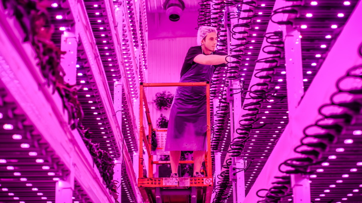 Warehouse farm with vertical farming lighting